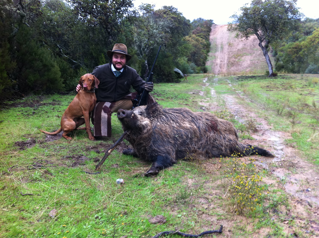 monteria-wildboar-in-spain