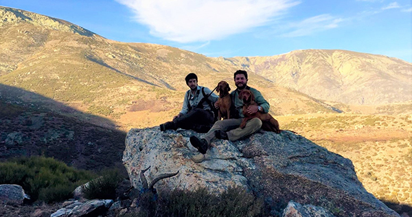 hunting in gredos